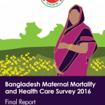 Bangladesh Maternal Mortality and Health Care Survey 2019: FInal Report